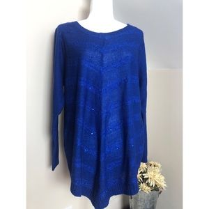 NWT! AGB Woman Blue Long Sleeve Pullover Sweater